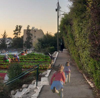 אוטופיות ושילובים נופיים בנווה שאנן בחיפה